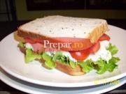 Sandwich de pui sanatos